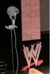WWE09 05