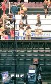 WWE09 07